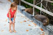 Adorable little girl looking to sea lions in a wild on Galapagos island of Isabela
