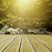 Wooden deck in front of forest scene