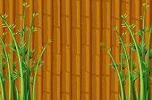 Illustration of a bamboo wallpaper