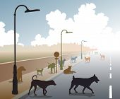 Illustration of a motley group of stray dogs on a lonely road
