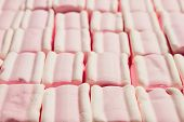 The Pattern Of Sweet Marshmallow