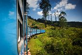 train from Nuwara Eliya to Kandy among tea plantations in the highlands of Sri Lanka