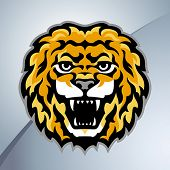 Lion head mascot. Stylized vector illustration.