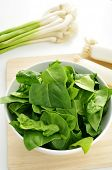 a bowl with raw spinach, and some leeks and green garlics on the countertop of a kitchen