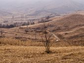 Path Between the Hills