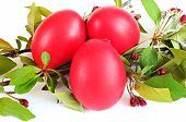 Red Eggs, Spring Twig With Leaves And Flowers; Easter Concept