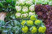 Cabbage and salad at a market