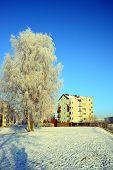 Vilnius City Pasilaiciai District At Winter Time