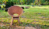 Stone Chair In The Garden