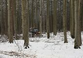 Tractor In Forest In Winter
