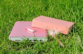 Pink Laptop, Book, Pen And Disk On Key On Green Grass