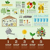 Garden work infographic elements. Working tools set.