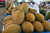 Ashgabad, Turkmenistan - October 15, 2014. Fragrant Sweet Melons On Closed Market In Ashgabad, Turkm