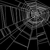 white spider web isolated on the  black background