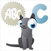 isolated vector cartoon cute comic animal abc: C is for Cat