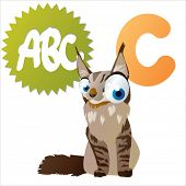 vector cartoon isolated animals abc: C is for Cat
