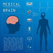 Medical and healthcare infographic, Brain  infographics