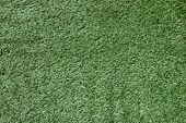 A Green Carpet Texture