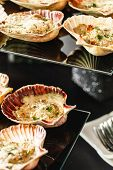 pic of scallop shell  - Scallops in the shell - JPG