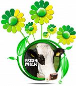 stock photo of cow head  - Round symbol with a head of cow and text fresh milk green and yellow flowers with leafs - JPG