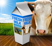 pic of white-milk  - White packaging of fresh milk with text Fresh Milk in a countryside landscape with green grass and a close up of a brown and white cow - JPG