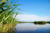stock photo of vegetation  - River landscape clouds in the blue sky the waves on the water river green tourism travel along the river boating summer sunny day after the storm a harbor for ships aquatic vegetation - JPG