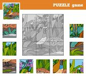picture of quail  - Puzzle Game for children with animals  - JPG