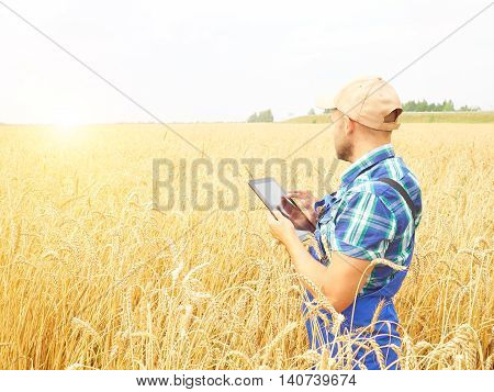 Farmer In A Plaid Shirt Controlled His Field And Working At Tablet.  Wheat Harvest.