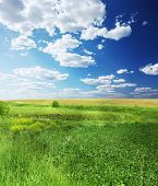 Green meadow blue sky and clouds
