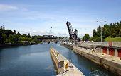 View Of Chittenden Locks In Ballard