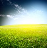 Green grass and blue sky with fluffy clouds poster