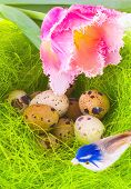 Nest With Easter Eggs And Bird