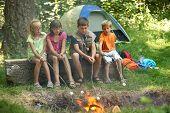 Crianças assar marshmallows em fogueira