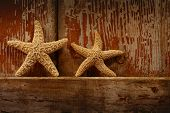 Starfish on barn door/ Small starfish resting on the edge of a barn door
