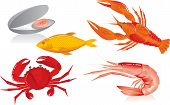 Seafood:  Oyster, Shrimp, Crawfish, Crab And Fish