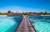 Tropical travel destinations with Maldives island and wooden wharf, exotic vacation poster