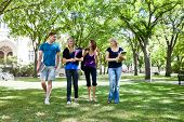 stock photo of mating  - Group of college students walking in campus ground - JPG
