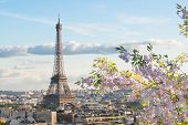 Famous Eiffel Tower And Paris Roofs At Spring, Paris France poster