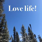 Quote - Love life with blue sky and trees poster