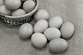 Eggs Of Brown Color In Cardboard Cells