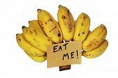 Eat Me Banana