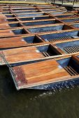 Punts - Cambridge