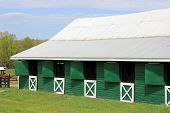 Bright green barn with white doors