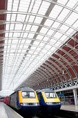 Paddington Station Trains