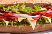 long whole wheat baguette sandwich with meat,vegetables and cheese
