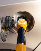 Fuel Pump Inserted In The Gas Tank Hatch. Refueling A Passenger Car With Gasoline. Yellow Fuel Pump  poster
