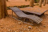 Chase Lounge Bench And Korean Style Picnic Table In Mountain Wilderness Public Park. poster