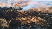 Forest And Field Fire. Dry Grass Burns, Natural Disaster. Aerial View. Large Burnt Field. Strong Smo poster