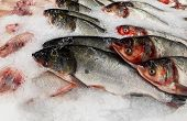Raw Fishes In The Market. Black-banded Kingfish. Black-banded Trevally. poster