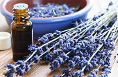 picture of essential oil  - Dried lavender herb and essential aromatherapy oil - JPG